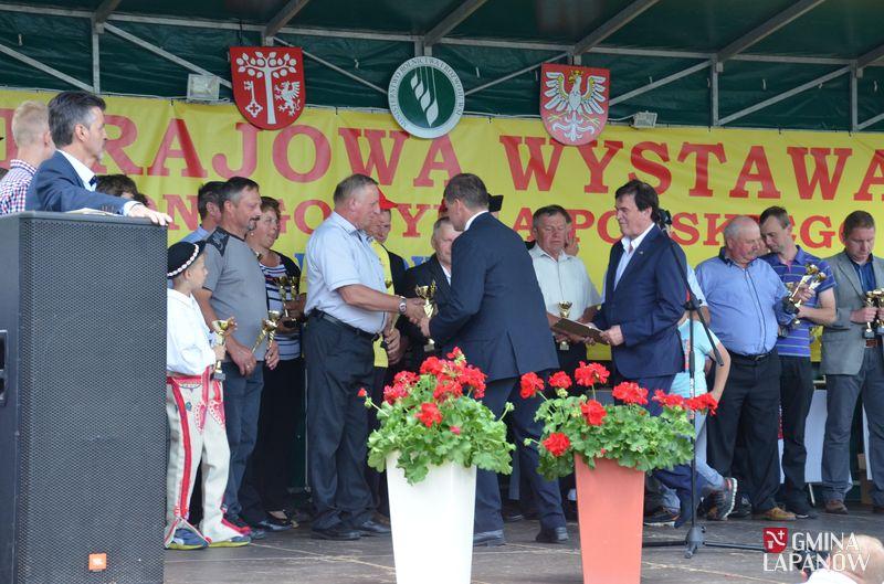 Oglądasz obraz z artykułu: XI Krajowa Wystawa Czerwonego Bydła Polskiego
